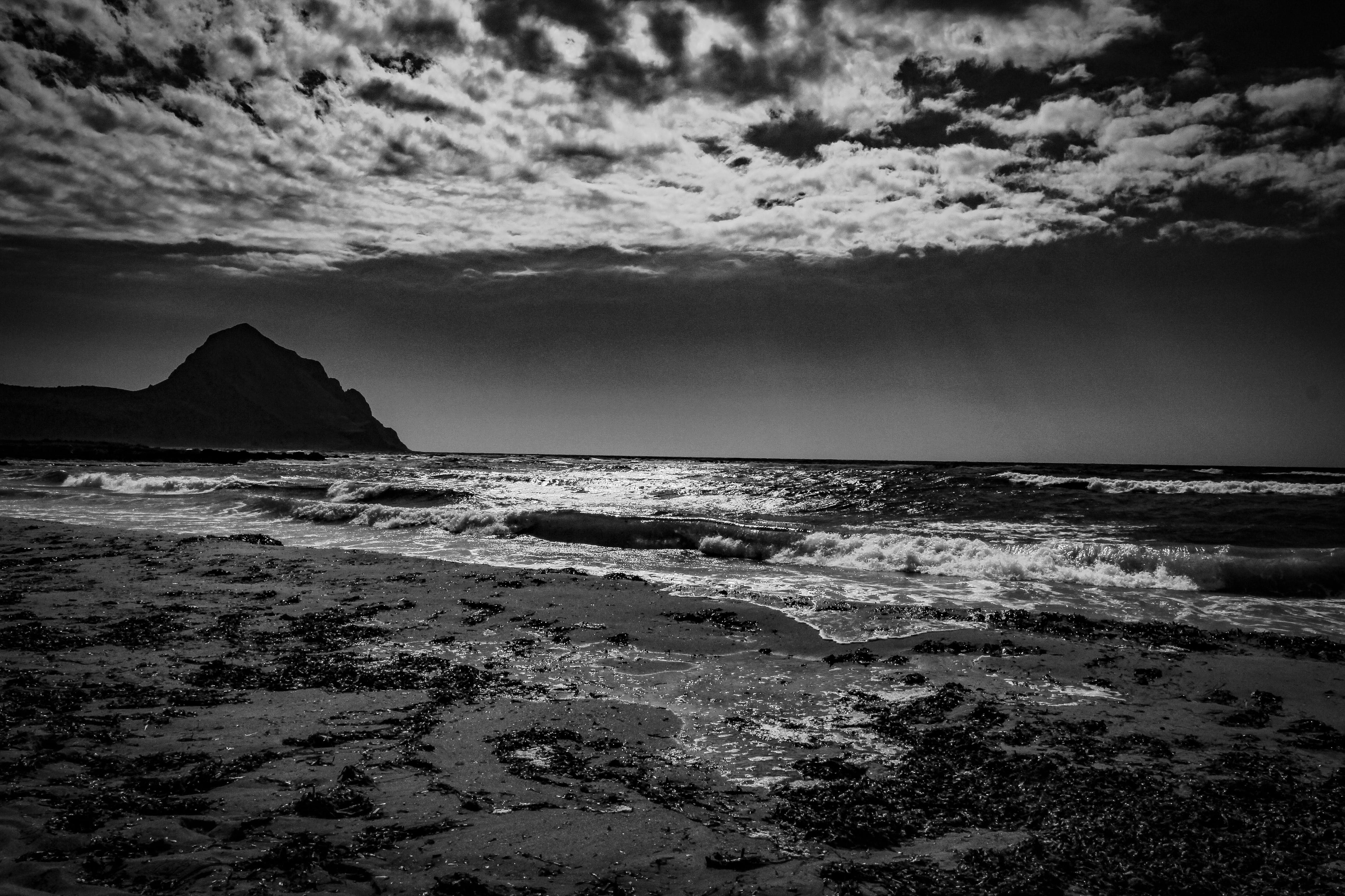 Grayscale Photography of Beach
