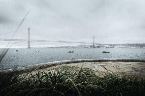 Ảnh lưu trữ miễn phí về cầu, cầu 25 de abril, con sông, mưa