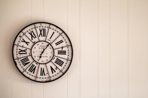 관찰, 둥근, 벽 시계, 시간의 무료 스톡 사진