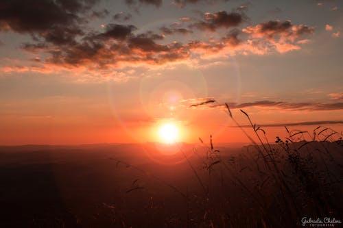 Kostnadsfri bild av kvällssol, skymning, solbländning, solig