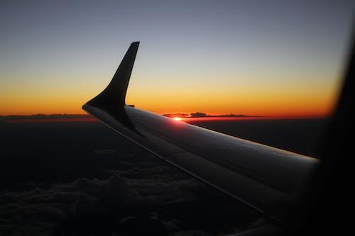 Kostnadsfri bild av eftermiddag, flygplan, flygvinge, gyllene sol