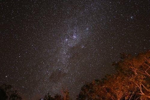 Kostnadsfri bild av kändisar, kväll, Mörk himmel, national skog