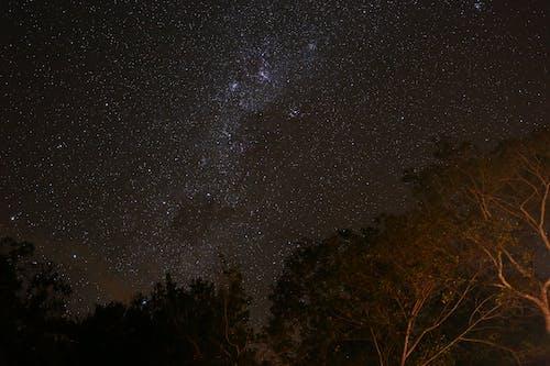Ảnh lưu trữ miễn phí về ánh sao, bầu trời đầy sao, Bầu trời tối