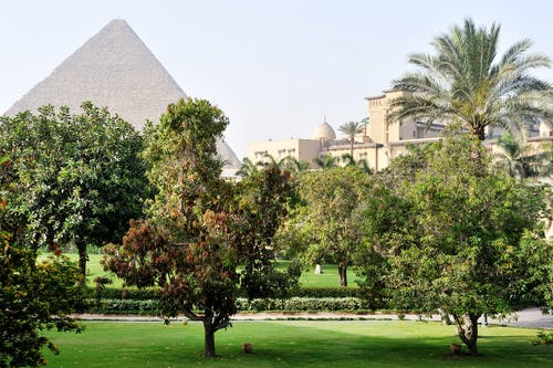 吉薩, 埃及, 旅館, 景觀 的 免費圖庫相片