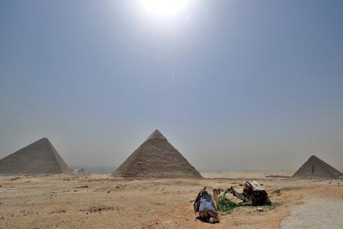 古老的, 吉薩, 吉薩高原, 埃及 的 免費圖庫相片