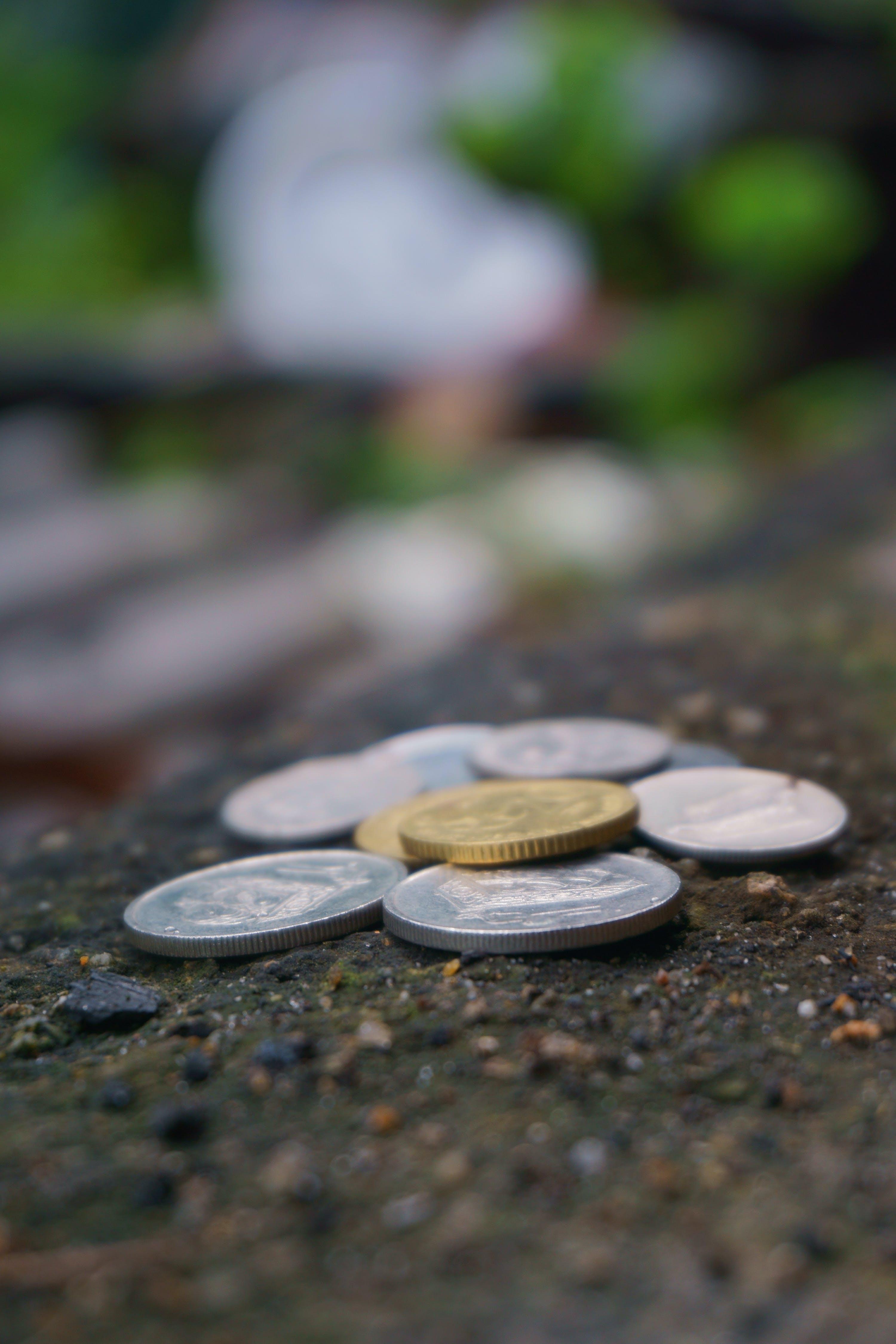 Free stock photo of nature, blur, ground, stones