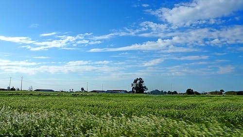美麗的風景 的 免費圖庫相片