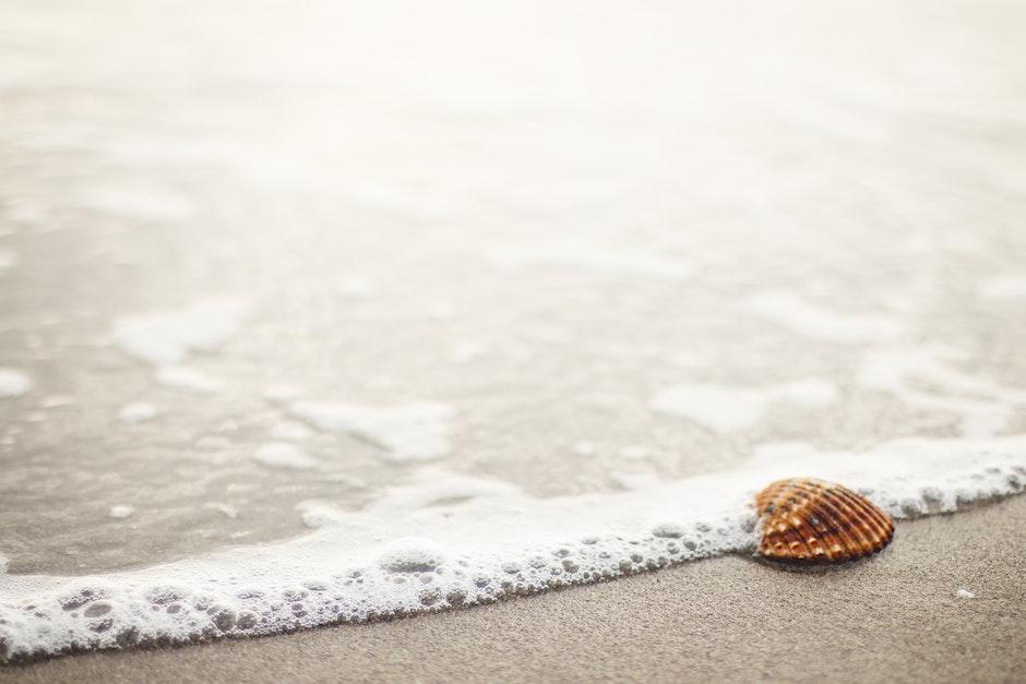 beach, beachlife, salt water