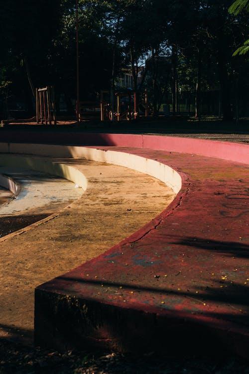 Безкоштовне стокове фото на тему «бетон, Денне світло, дерева, дорога»