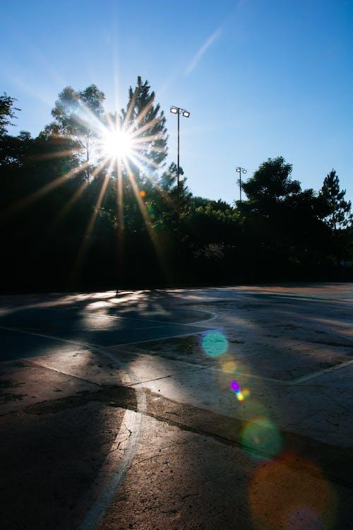 Fotos de stock gratuitas de juzgado, luz del sol, pista de baloncesto, sol