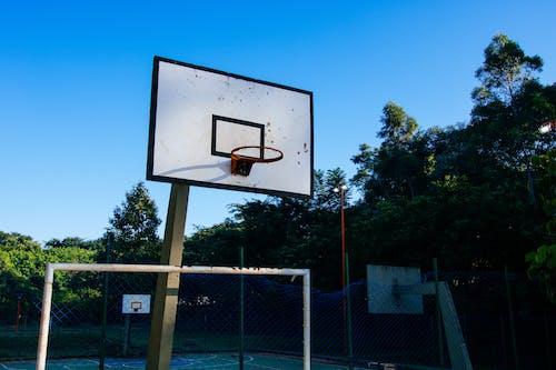 Darmowe zdjęcie z galerii z kort, obręcz do koszykówki, pierścień do koszykówki, tablica