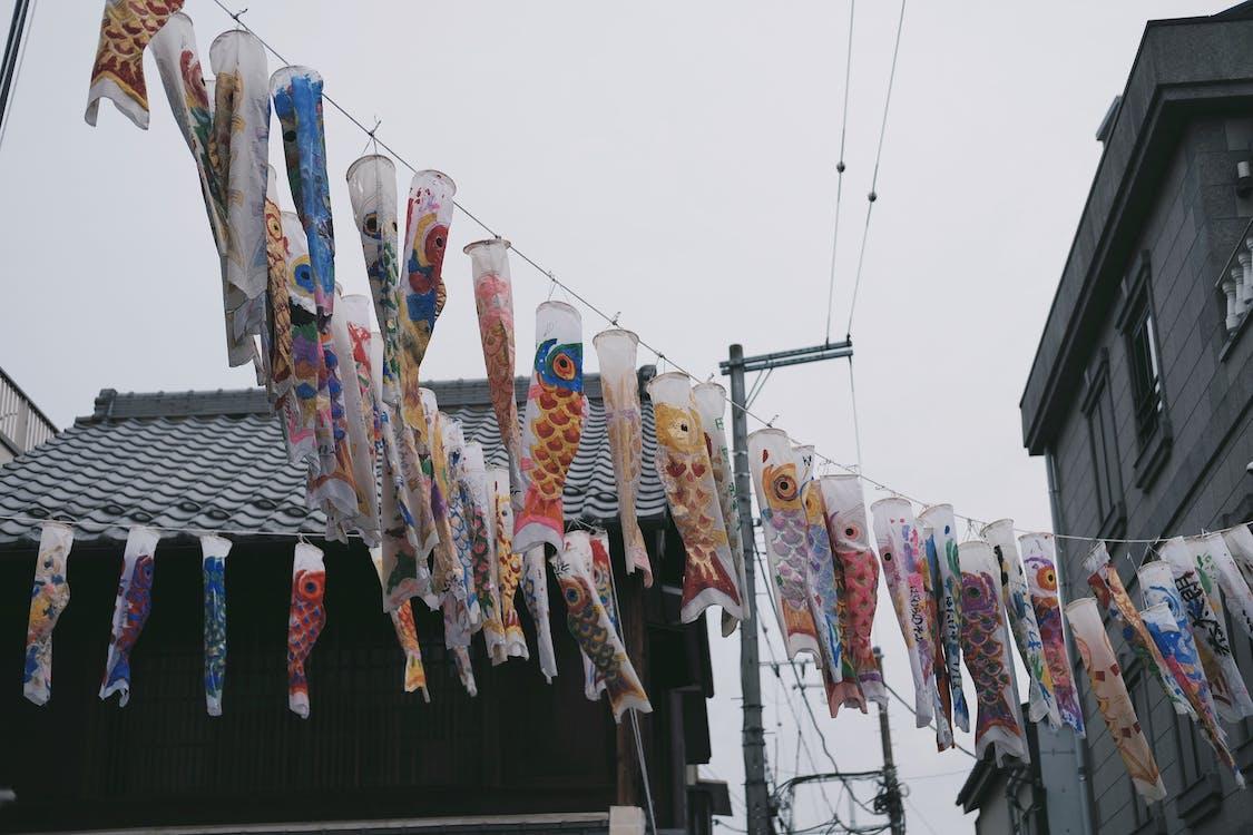 傳統, 掛, 日本 的 免费素材图片