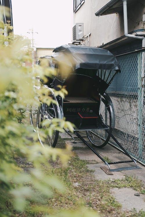 Gratis lagerfoto af hestevogn, rickshaw, transportsystem