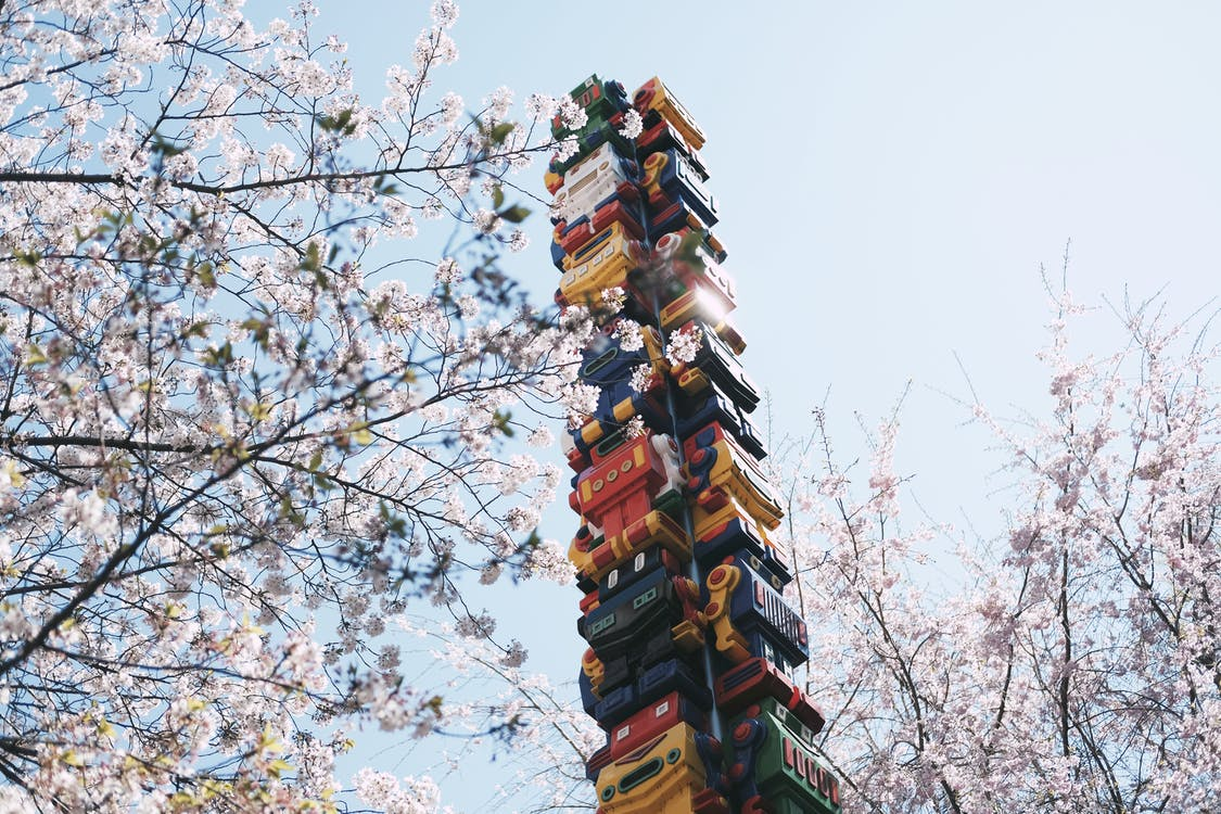 Low-angle Photography of Robot Tower Between Cherry Blossom Trees