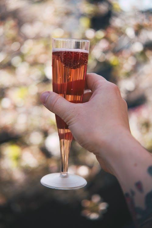 乾杯, 吐司, 喝, 慶祝 的 免费素材照片