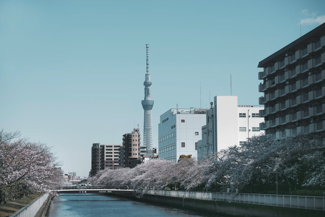 River Near a City