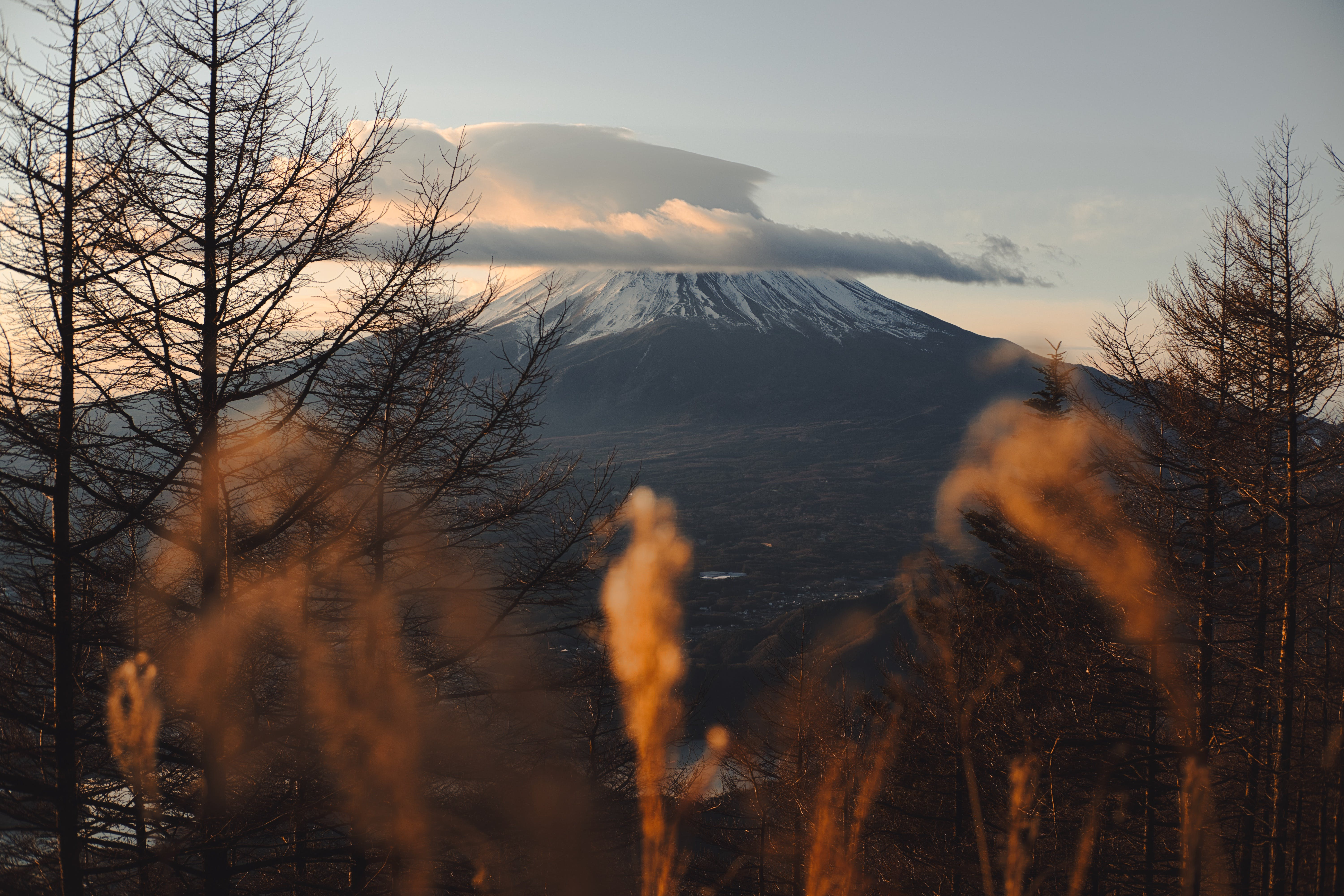 Landscape of Mount Fuji