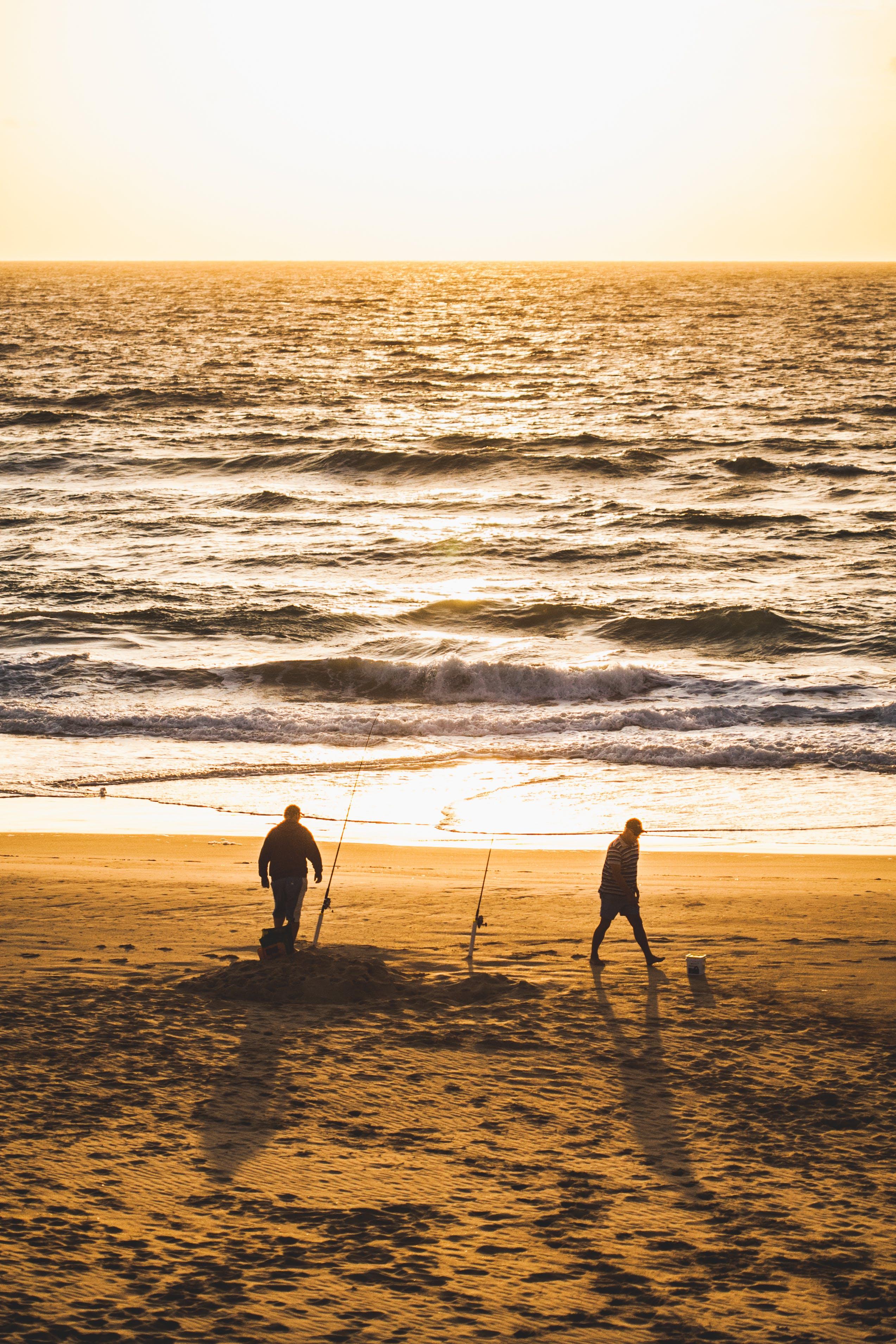 คลังภาพถ่ายฟรี ของ กลางแจ้ง, ชายหาด, ซิลูเอตต์, ทราย