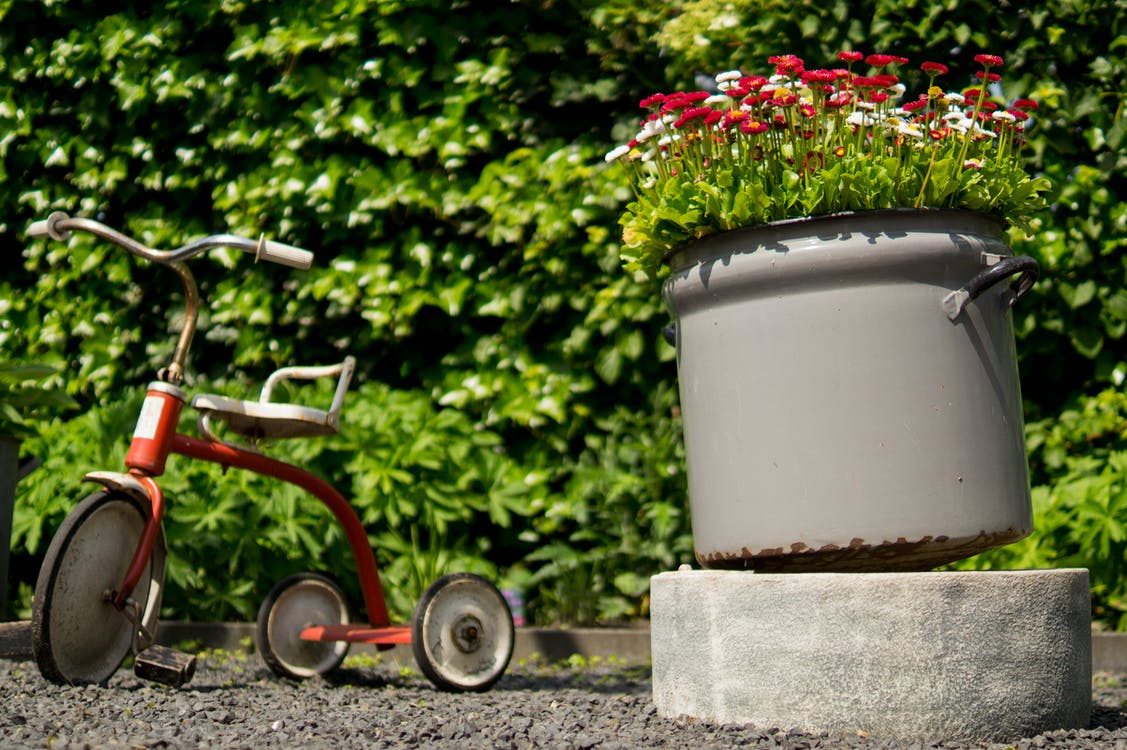 Red Pedal Trike Beside Container With Flowers