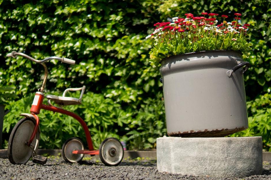 childhood, flowerpot, flowers