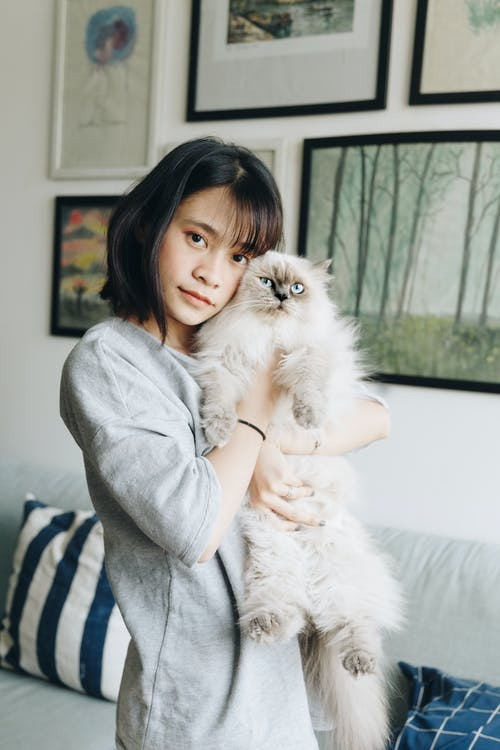 Woman Hugging Himalayan Cat