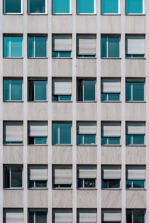 bê tông, chung cư, cửa sổ