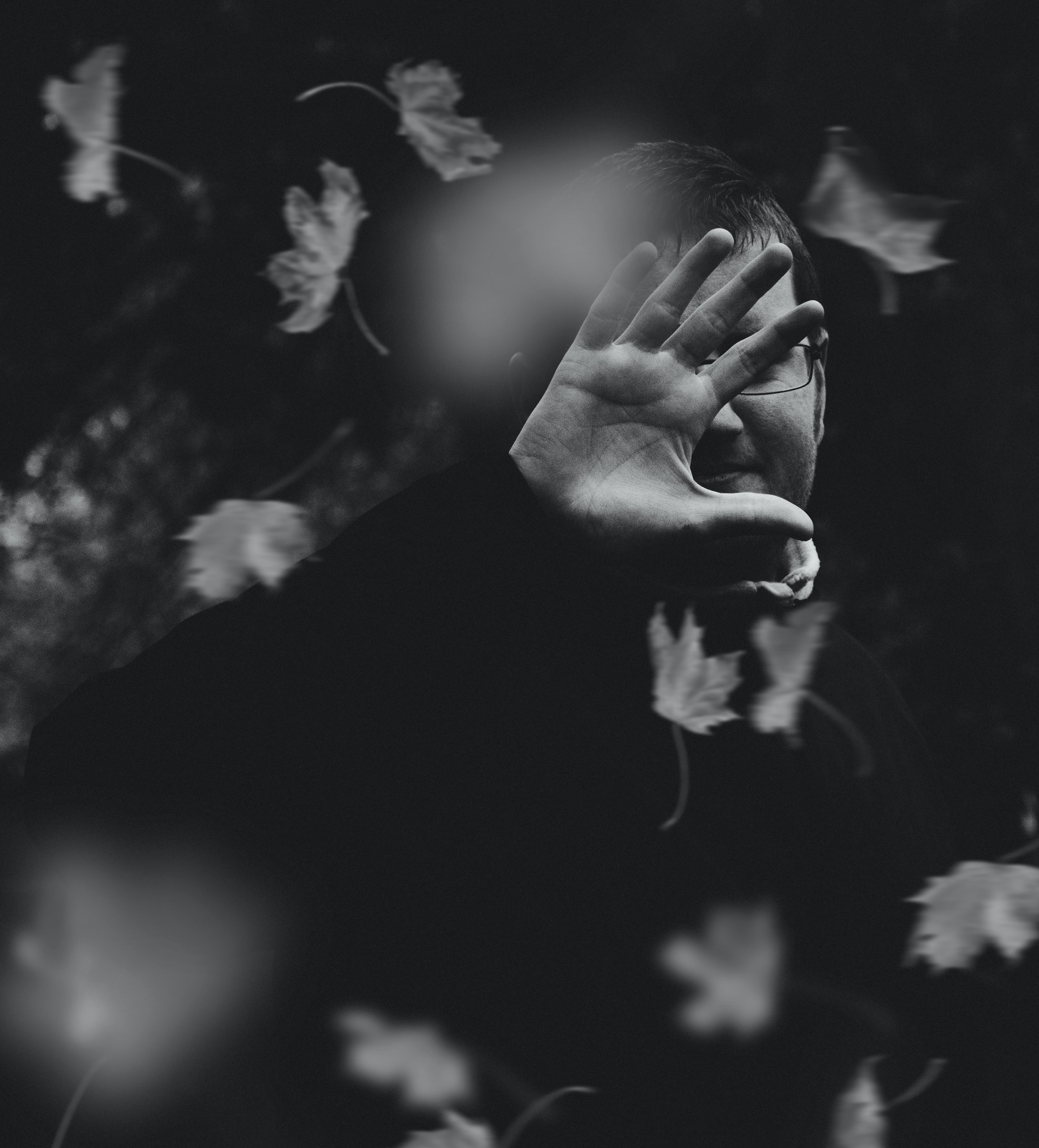 Základová fotografie zdarma na téma černobílá, černobílý, listy, muž