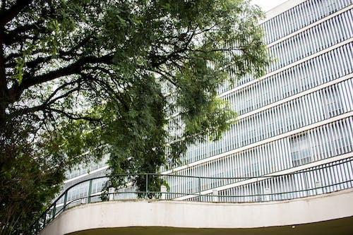 açık hava, ağaç, bakış açısı, bina içeren Ücretsiz stok fotoğraf