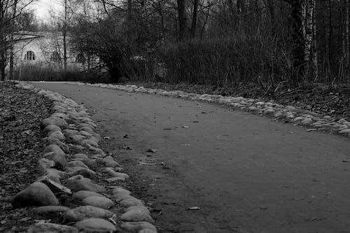 Foto stok gratis abstrak, b / w, putih hitam, ч / б