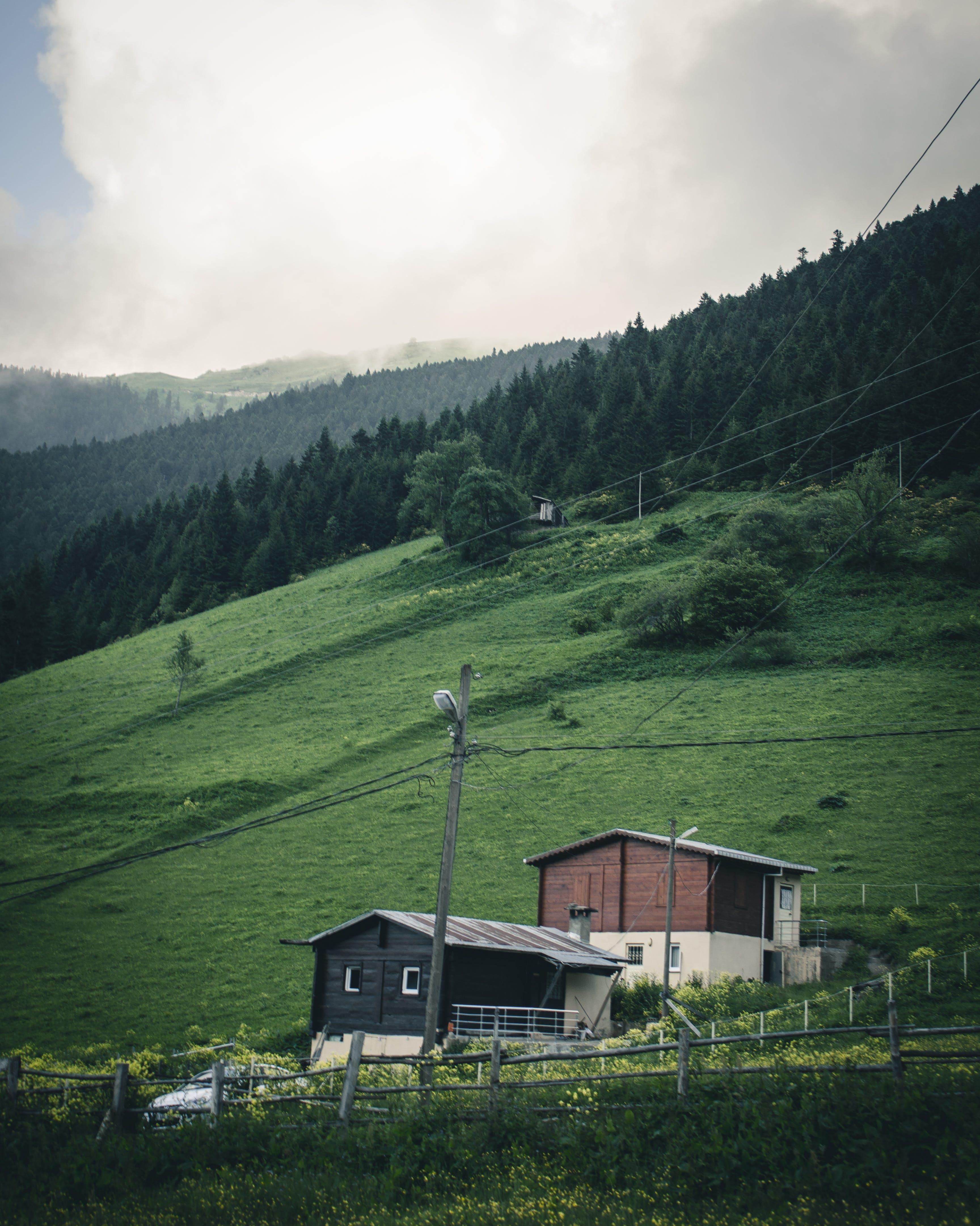 Ingyenes stockfotó dombok, ég, erdő, fák témában
