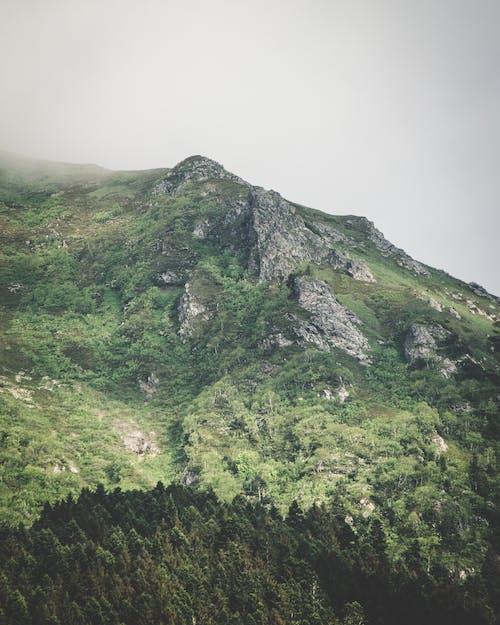 Fotos de stock gratuitas de con niebla, escénico, montaña, naturaleza