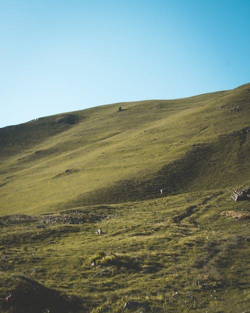 Imagine de stoc gratuită din agricultură, deal, fermă, la țară