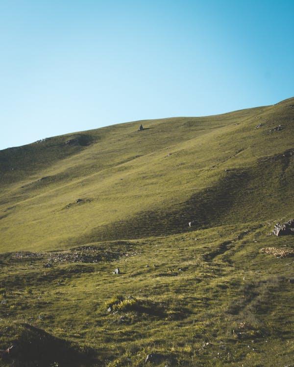 αγρόκτημα, βουνό, γεωργία