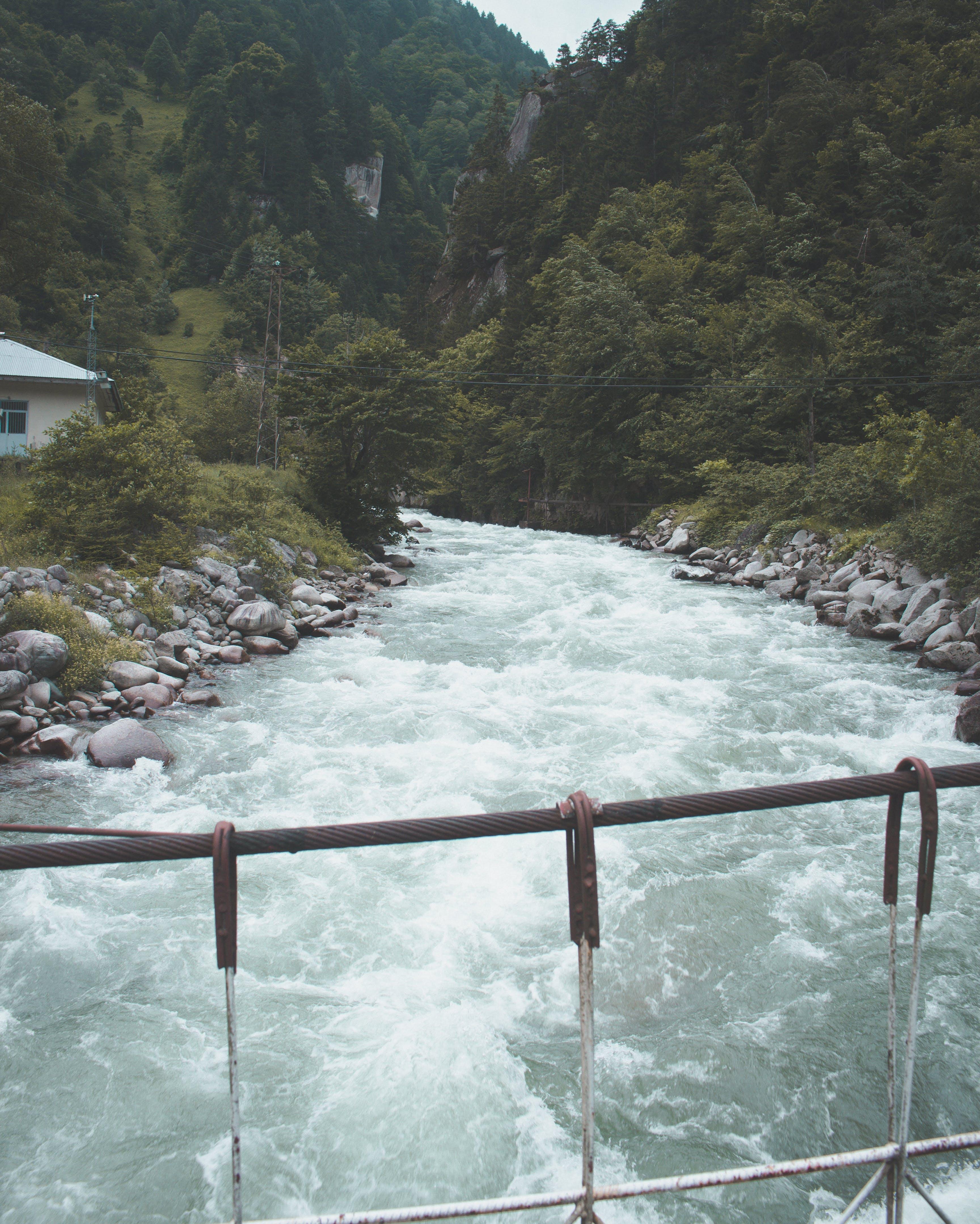Δωρεάν στοκ φωτογραφιών με flpw, βουνά, βράχια, γέφυρα