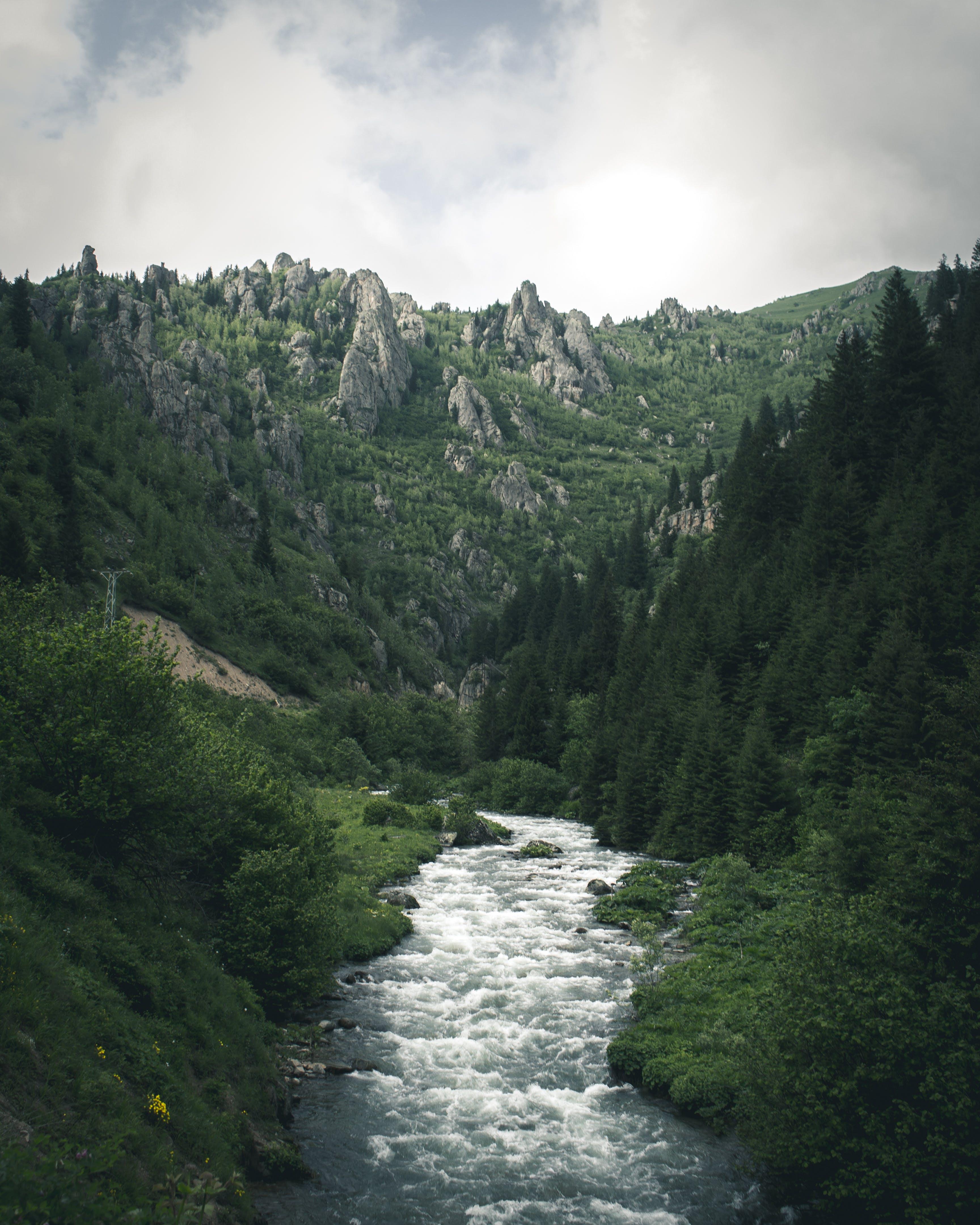 Δωρεάν στοκ φωτογραφιών με βουνά, βράχια, γρασίδι, γραφικός