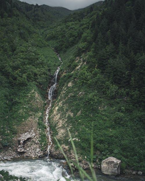Foto d'estoc gratuïta de a l'aire lliure, cascada, medi ambient, muntanya