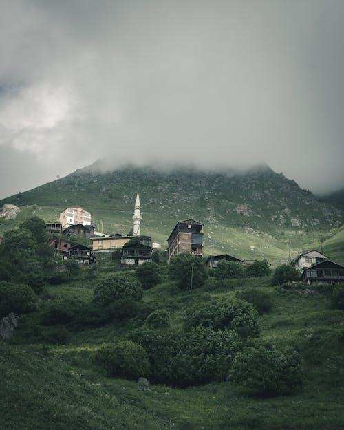 houses near mountain