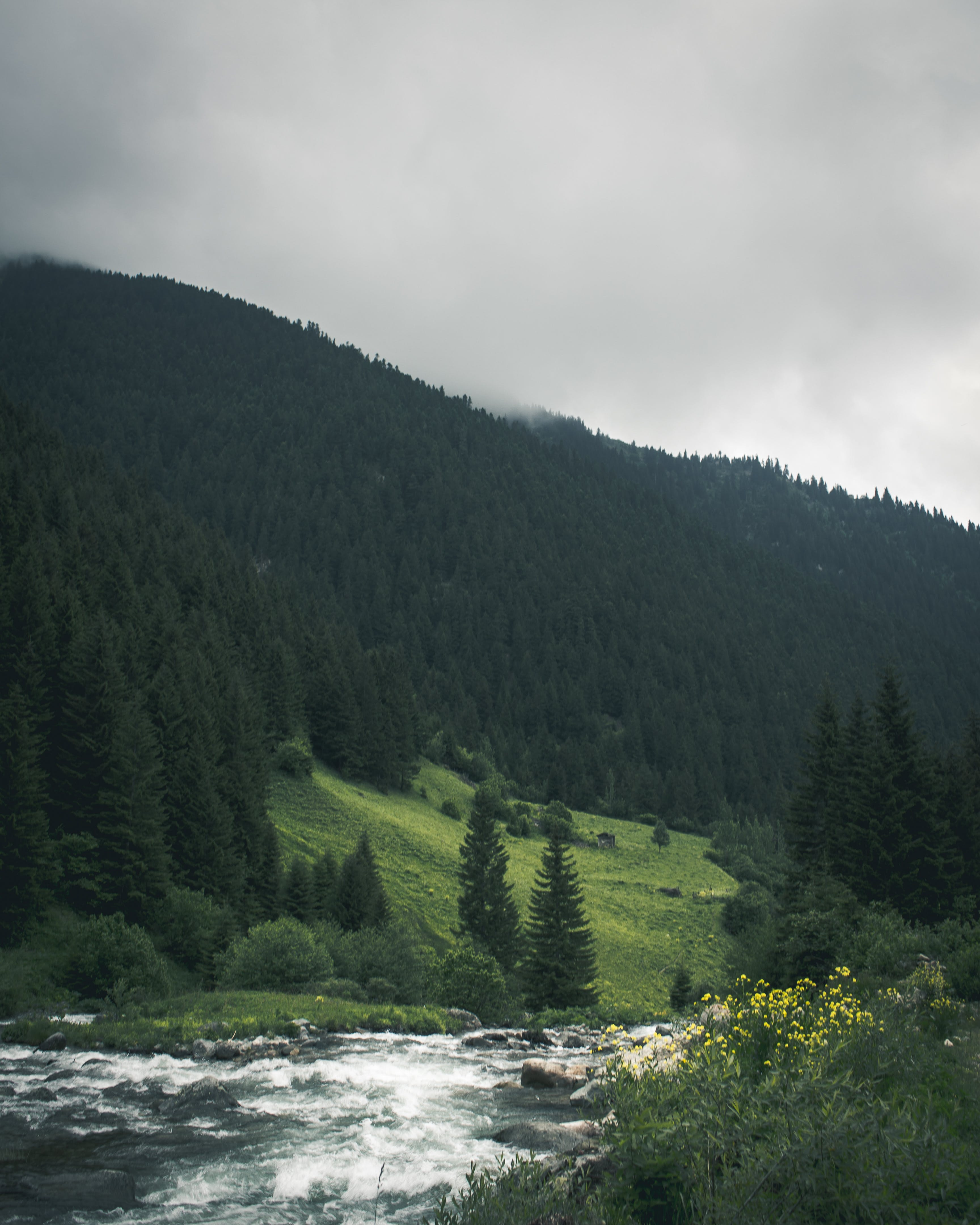 Ilmainen kuvapankkikuva tunnisteilla joki, kivet, luonto, maaseudun