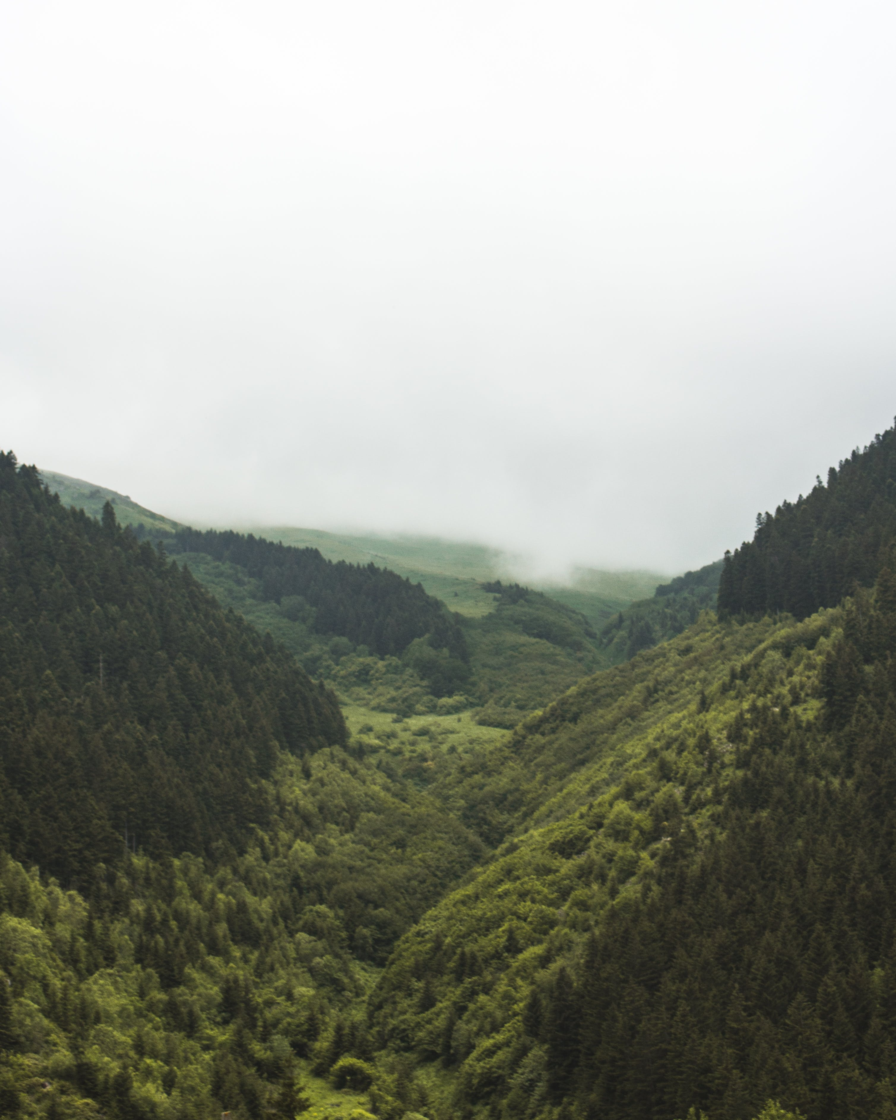 Ilmainen kuvapankkikuva tunnisteilla kaunis, kuva yläkulmasta, laakso, luonto