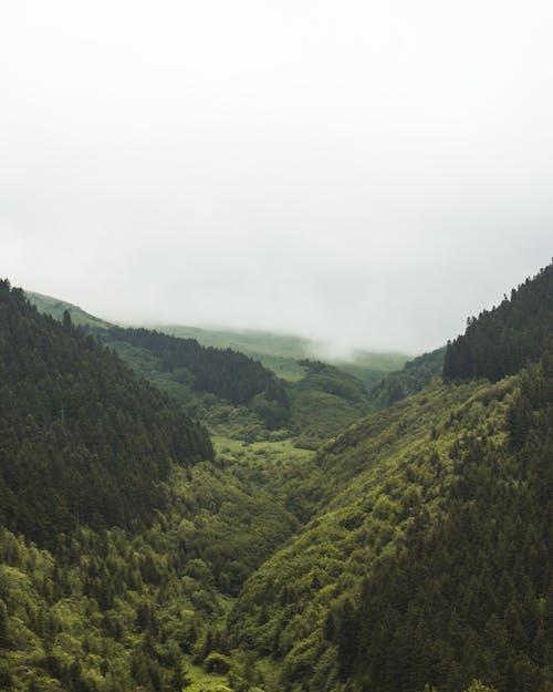 Gratis arkivbilde med ås, dal, høy-vinklet bilde, landskap