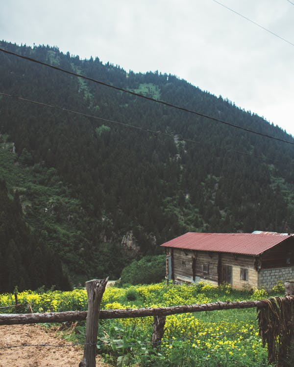 bjerg, bungalow, fægte