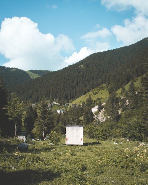 Základová fotografie zdarma na téma architektura, denní světlo, dům, hory