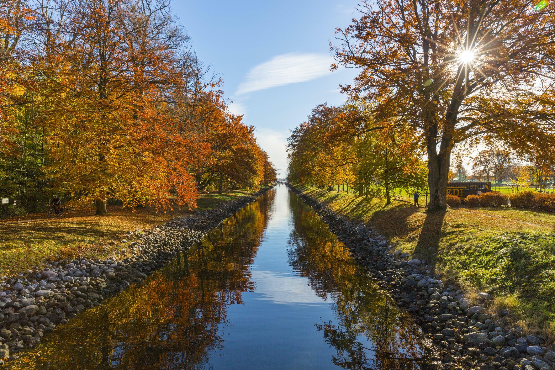 Kostenloses Stock Foto zu natur, wasser, bäume, park