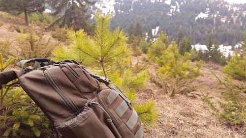 dağ yürüyüşü, seyahat içeren Ücretsiz stok fotoğraf
