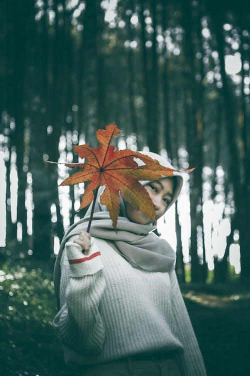 Ilmainen kuvapankkikuva tunnisteilla bandung, elämää luonnossa, hijab, indonesia