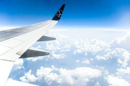 Základová fotografie zdarma na téma látat, letadlo, na obloze, obloha