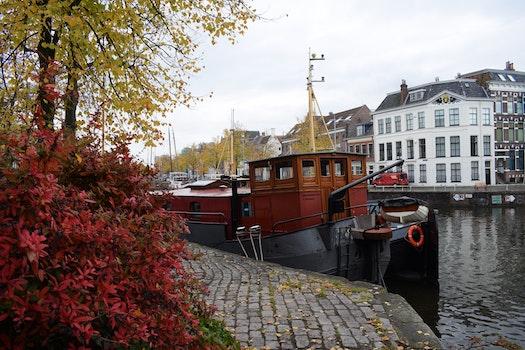 Free stock photo of city, boat, trees, winter