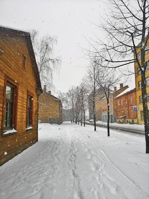 Darmowe zdjęcie z galerii z chodzić, dom, drewniany, dzień