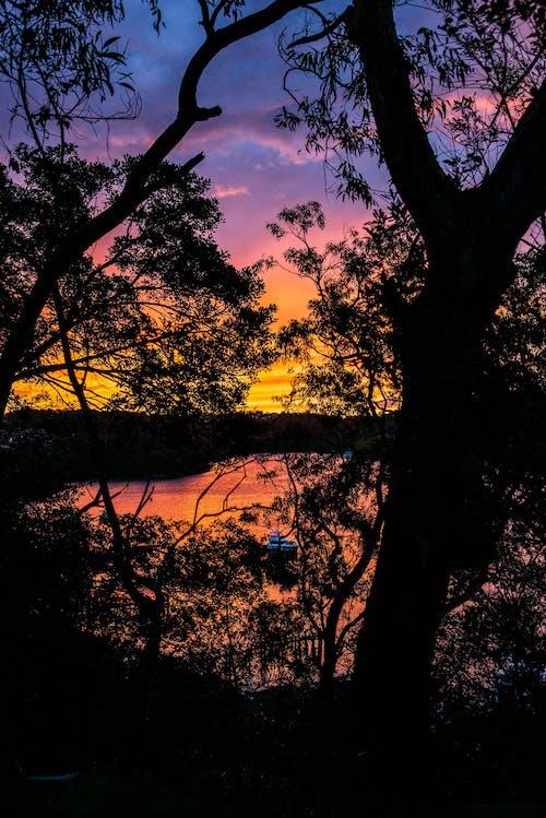 天性, 日落, 景觀, 橘色 的 免费素材照片