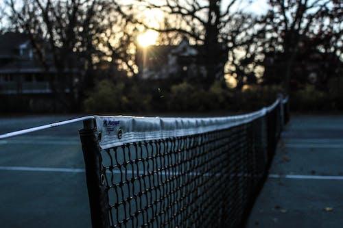 Free stock photo of court, evening, jared nanasy